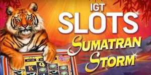 Maquinitas de casino Sumatran 142553