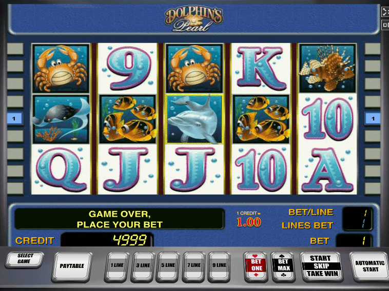 Casino net Cool Book Codificada